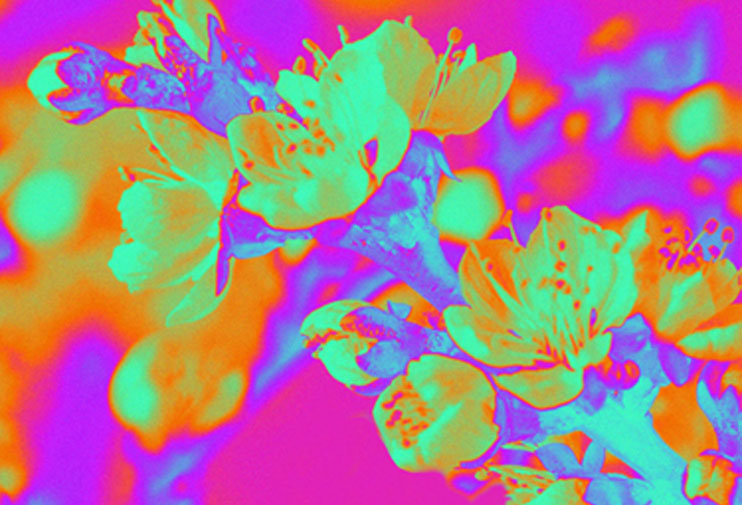 Camelphat, Music, New Single, Hypercolour, Yannis Philippakis