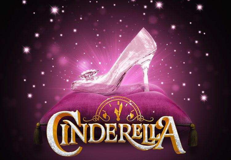Birds of a Feather, Linda Robson, Cinderella, Theatre, St Helens, Panto