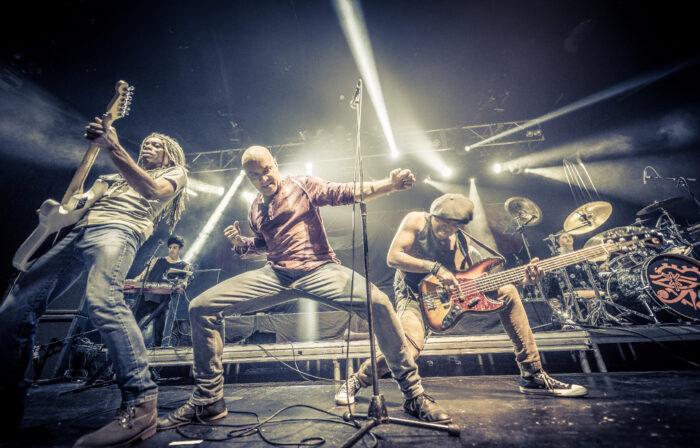 Dan Reed Network, Music News, New Album, TotalNtertainment, New Single