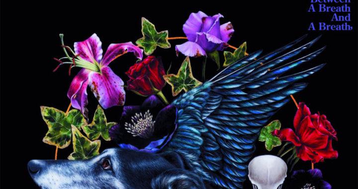 Dyble Longdon – Announce Album Release