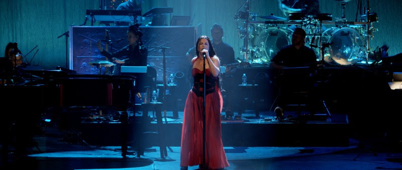 Evanescence, DVD, music, TotalNtertainment, Synthesis