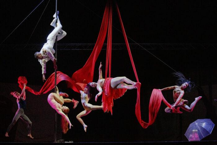 Luminosa, Jacksons Lane, Lost in Translation, Theatre, Circus, Theatre News, TotalNtertainment
