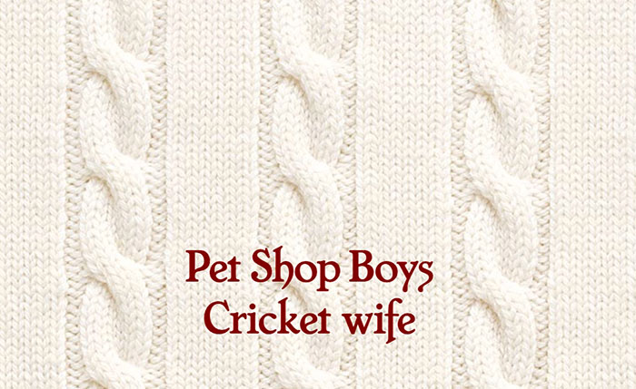 Cricket Wife, Pet Shop Boys, Music, New Release, TotalNtertainment,