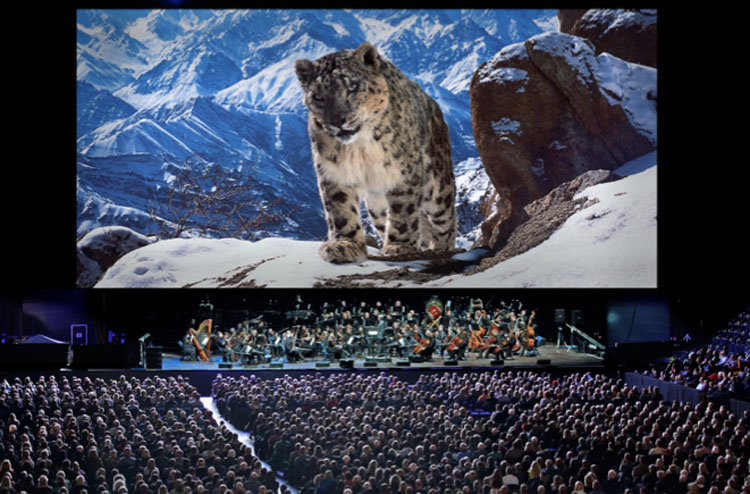 Planet Earth II Live, Theatre, TotalNtertainment, Tour, Leeds