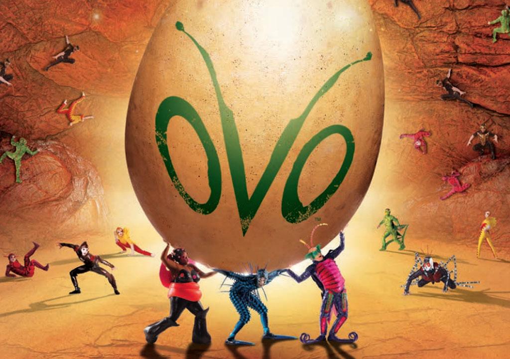 Cirque du Soleil, Ovo, theatre, Circus, Production
