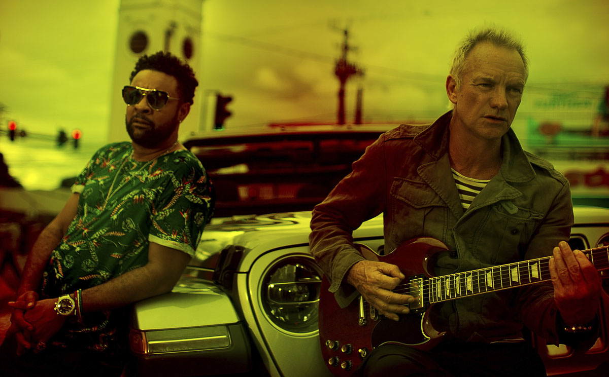Sting, Shaggy, music, news, totalntertanment, Album, Single