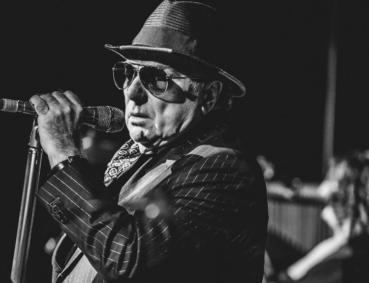 Van Morrison, Music, TotalNtertainment, London, Tour