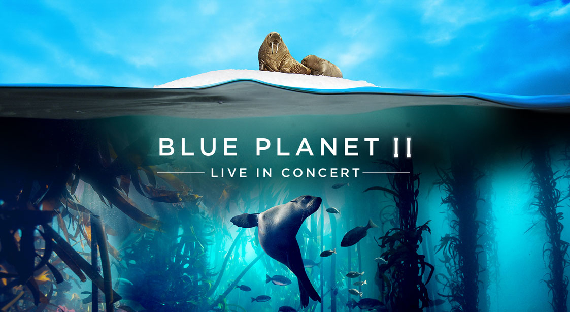 Blue Planet, Orchestra, tour, David Attenborough, Arena, tour, music.