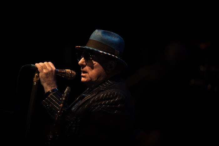 Van Morrison, Music, Live Stream, TotalNtertainment
